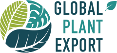 Global Plant Export